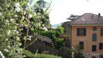 Rapallo - Appartamento 6 Posti Letto Con Grande Giardino 046