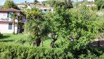 Bilocale Nel Verde - Vista 2